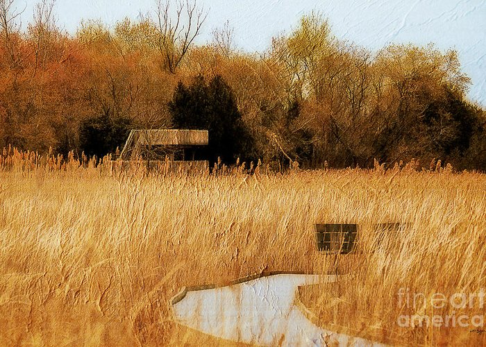 Marsh Greeting Card featuring the photograph The Overlook by Lois Bryan