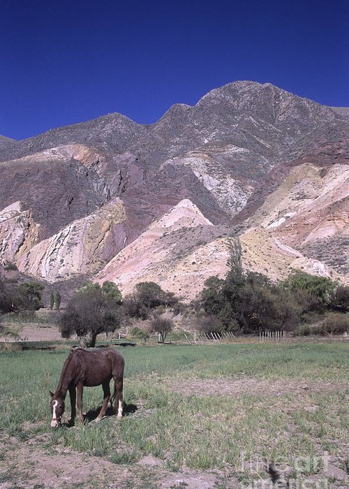 Argentina Greeting Card featuring the photograph The Painters Palette Jujuy Argentina by James Brunker