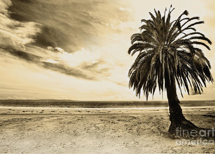 Gaviota Greeting Card featuring the photograph The Palm Swayed As The Storm On The Ocean Blew In by Artist and Photographer Laura Wrede