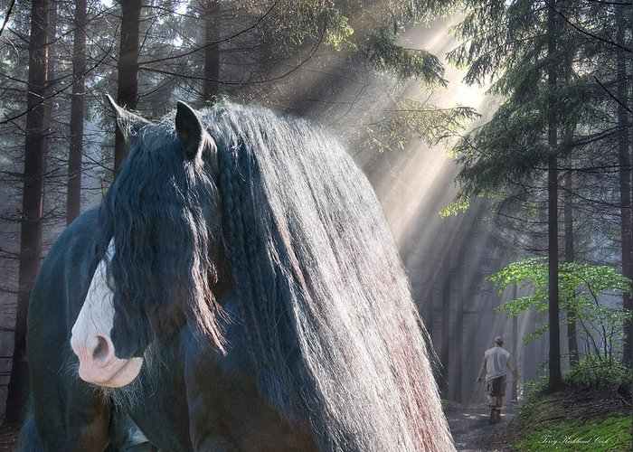 Equine Greeting Card featuring the photograph The Parting Of Two Earthly Souls by Terry Kirkland Cook