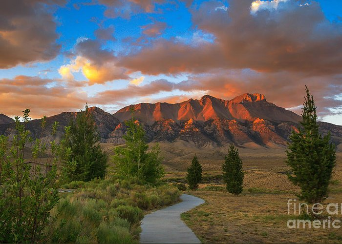 Sunrise Greeting Card featuring the photograph The Path To Beauty by Robert Bales