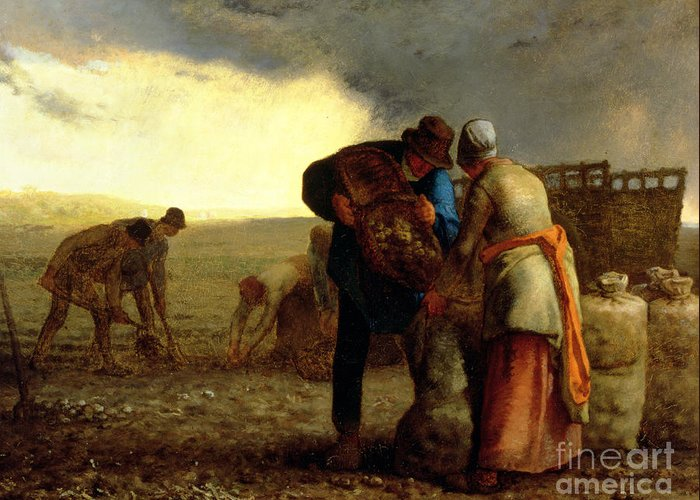 The Potato Harvest Greeting Card featuring the painting The Potato Harvest by Jean Francois Millet