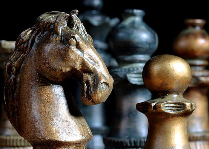 Chess Knight Greeting Cards