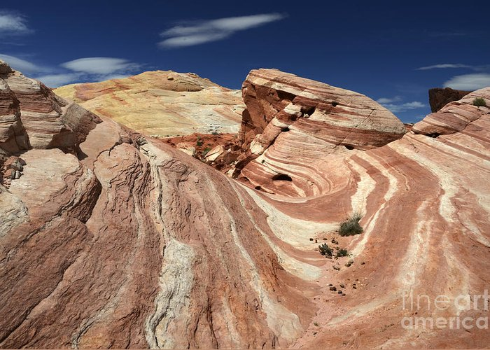 Valley Of Fire Greeting Card featuring the photograph The Purple Wave 2 by Bob Christopher