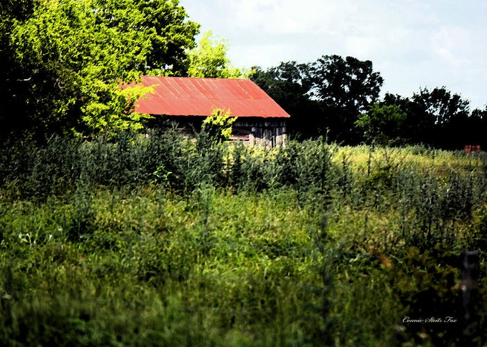 Abandoned Greeting Card featuring the photograph The Red Roof by Connie Fox