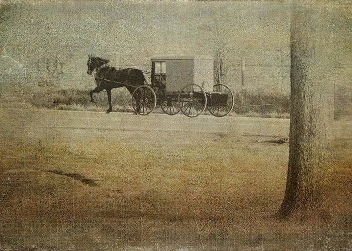 Amish Greeting Card featuring the photograph The Ride Home by Kathy Jennings