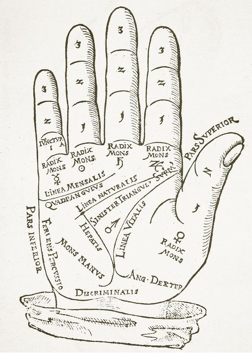 Right Hand Palm Reading Diagram Residential Electrical Symbols