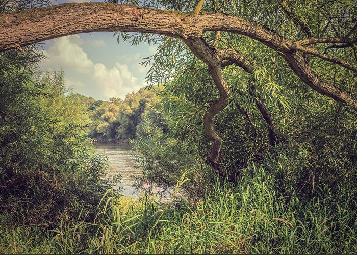 River Greeting Card featuring the photograph The River Severn At Buildwas by Amanda Elwell