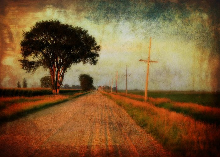 Gravel Road Greeting Card featuring the photograph The Road Home by Julie Hamilton