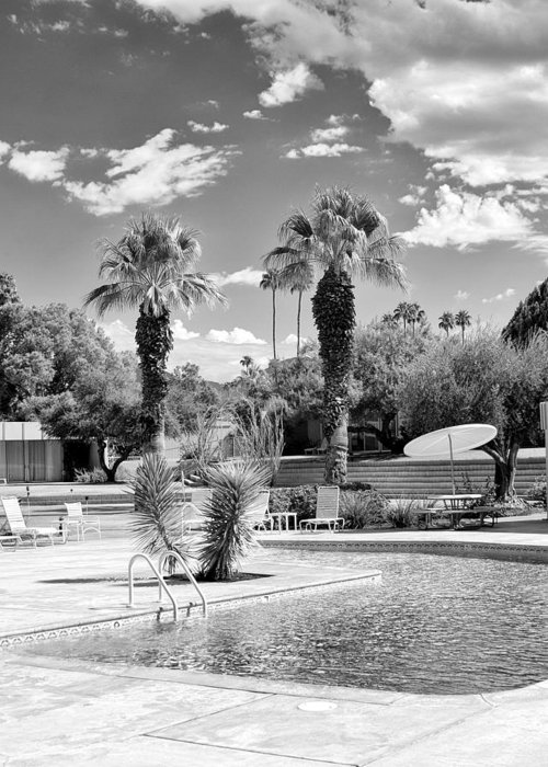 Sandpiper Greeting Card featuring the photograph The Sandpiper Pool Bw Palm Desert by William Dey