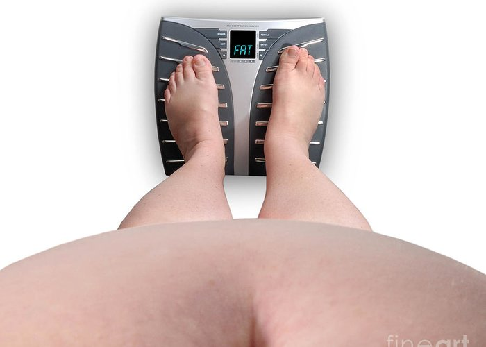 Abdomen Greeting Card featuring the photograph The Scale Says Series Fat by Amy Cicconi