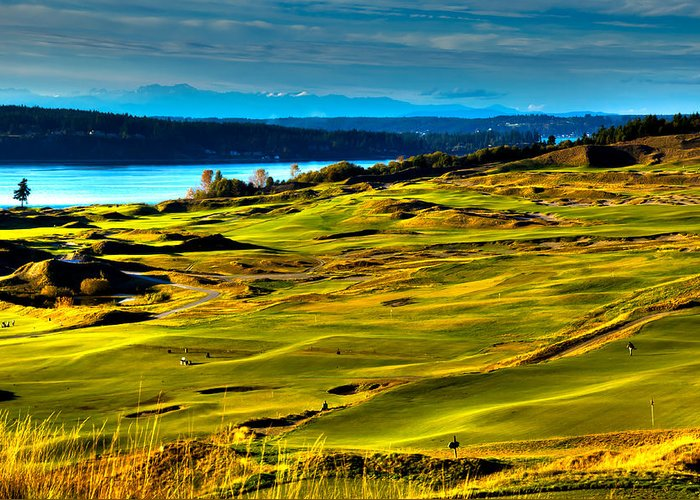 Chambers Bay Golf Course Greeting Card featuring the photograph The Scenic Chambers Bay Golf Course - Location Of The 2015 U.s. Open Tournament by David Patterson
