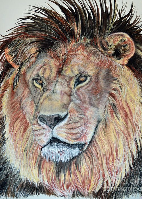 African Lion Greeting Card featuring the pastel The Sentinel by Ann Marie Chaffin