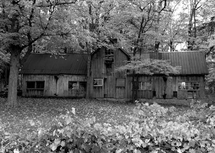 Building Greeting Card featuring the photograph The Shed by Michael Caron