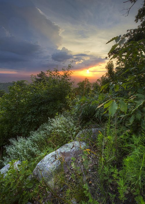 Appalachia Greeting Card featuring the photograph The Smokies by Debra and Dave Vanderlaan