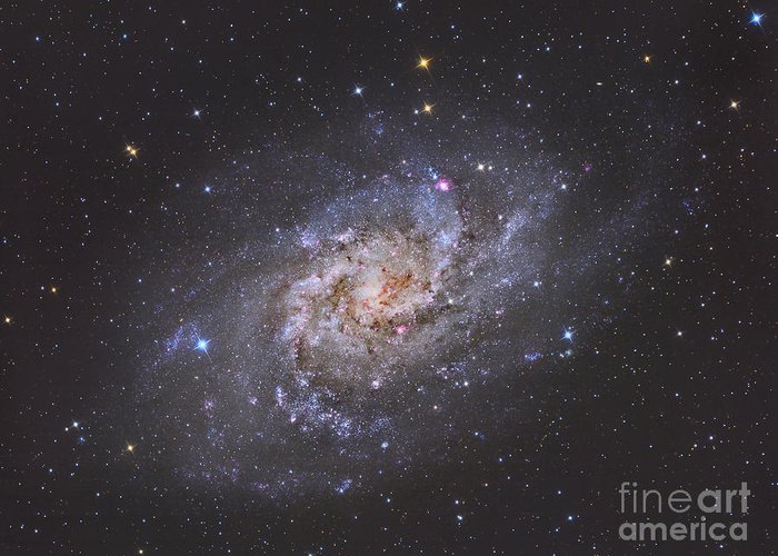Space Greeting Card featuring the photograph The Triangulum Galaxy by Reinhold Wittich