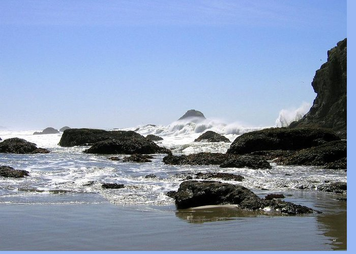 The Untamed Sea Greeting Card featuring the photograph The Untamed Sea by Will Borden
