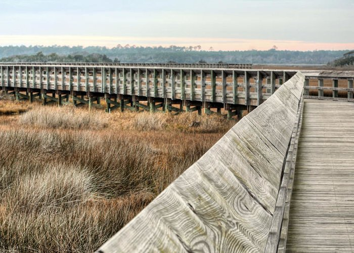 The Walkway Greeting Card featuring the photograph The Walkway by JC Findley