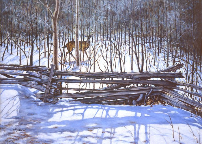 White-tailed Deer Greeting Card featuring the painting The Watcher In The Wood by Richard De Wolfe