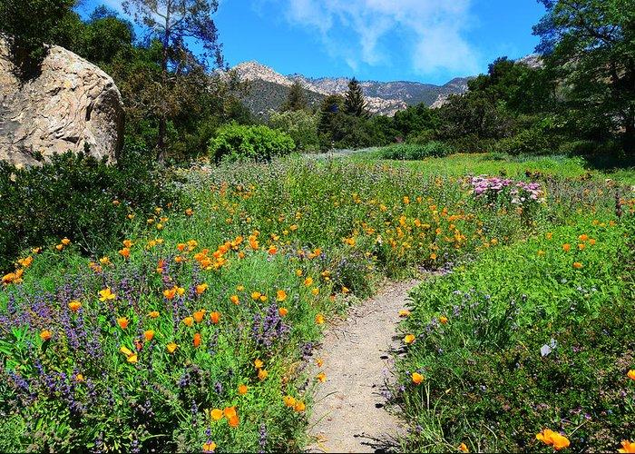 santa barbara botanic garden greeting cards - Santa Barbara Botanic Garden