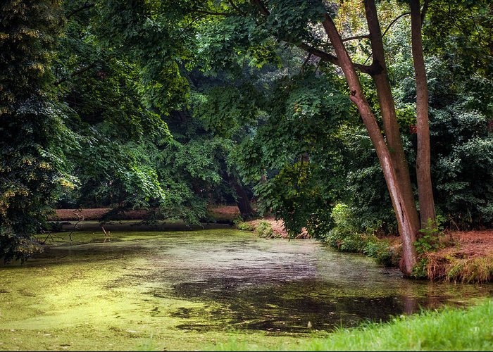 Utrecht Greeting Card featuring the photograph There Is Always A Hope. Park Of De Haar Castle by Jenny Rainbow