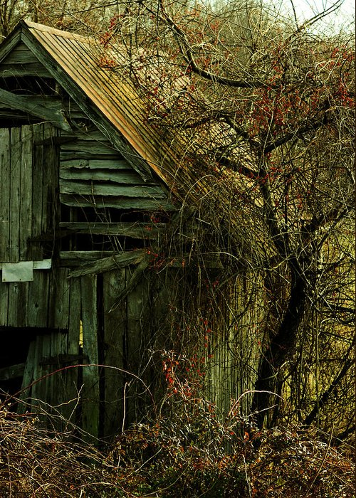 Barn Greeting Card featuring the photograph There Will Come Soft Rains by Rebecca Sherman