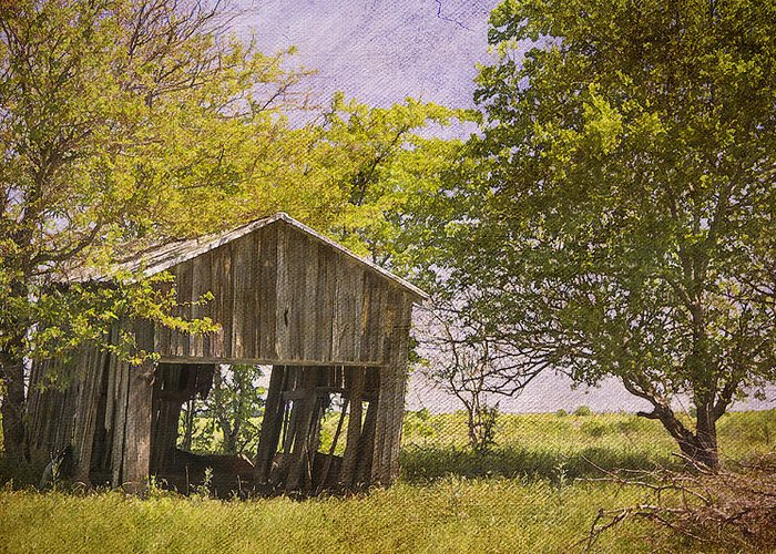 Abandoned Greeting Card featuring the photograph This Old Barn by Joan Carroll