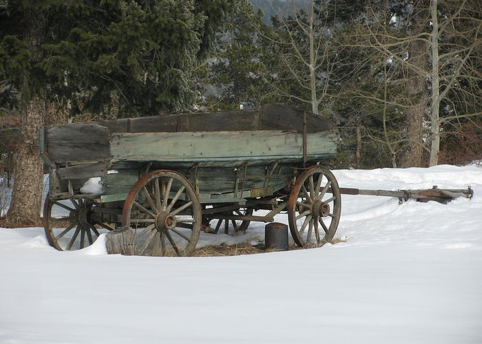 Transportation—plane Greeting Card featuring the photograph This Old Wagon by Steven Parker