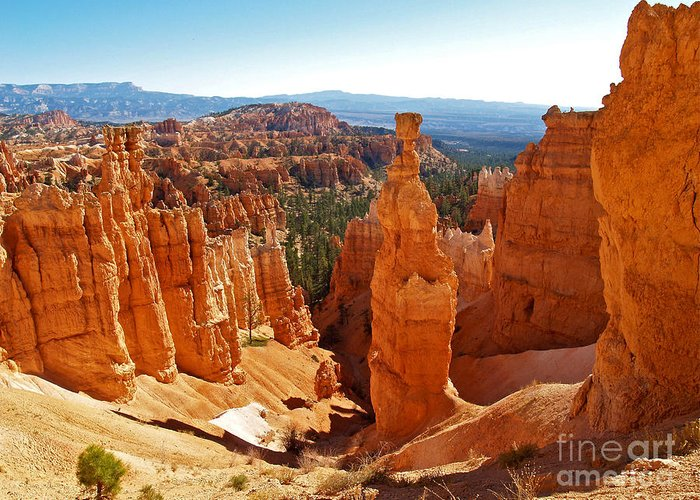 Landscape Greeting Card featuring the photograph Thor's Hammer At Bryce Canyon by Alex Cassels