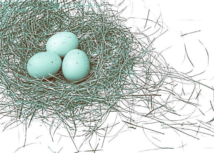 Bird Nest Greeting Card featuring the photograph Three Eggs In A Nest Teal Brown by Jennie Marie Schell