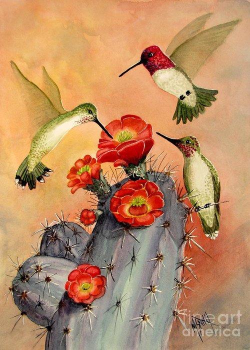 Annas Hummingbirds Greeting Cards