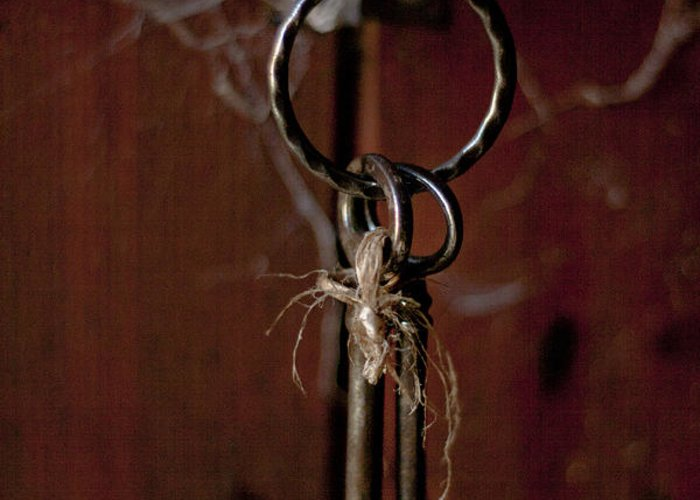 Abstract Greeting Card featuring the photograph Three Keys by Georgia Fowler