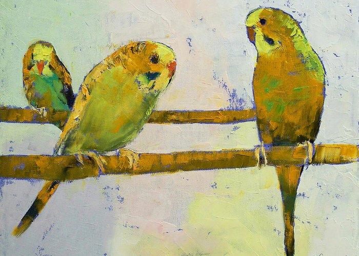 Parakeet Greeting Cards