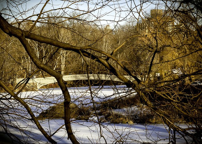 Bridge Greeting Card featuring the photograph Through The Branches 2 - Central Park - Nyc by Madeline Ellis