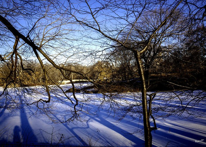 Bridge Greeting Card featuring the photograph Through The Branches 4 - Central Park - Nyc by Madeline Ellis