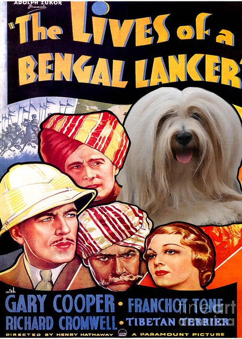 Dog Greeting Card featuring the painting Tibetan Terrier Art - The Lives Of A Bengal Lancer Movie Poster by Sandra Sij
