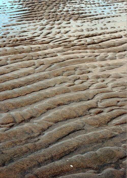 Sand Greeting Card featuring the photograph Tidal Footprint by Mamie Gunning