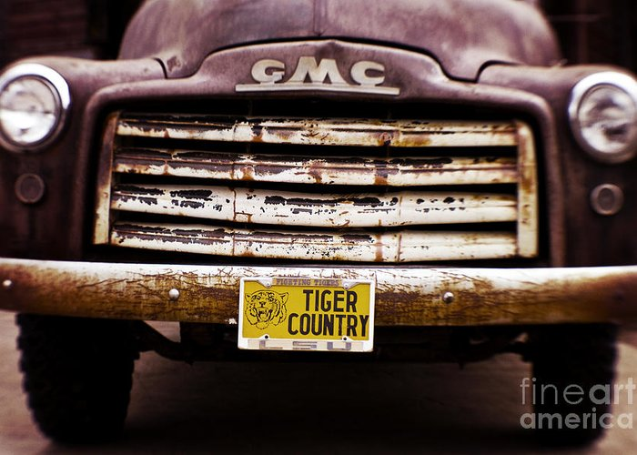 Lsu Greeting Card featuring the photograph Tiger Country - Purple And Old by Scott Pellegrin