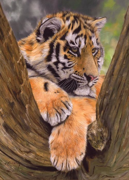 Tiger Greeting Card featuring the painting Tiger Cub Painting by David Stribbling