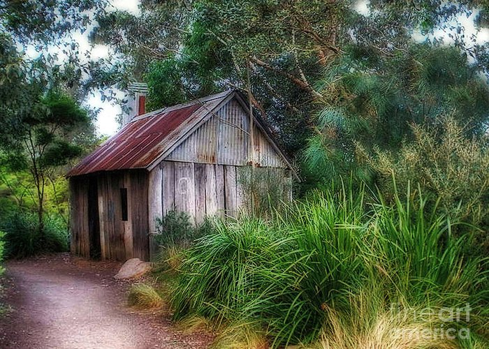 Photography Greeting Card featuring the photograph Timber Shack by Kaye Menner