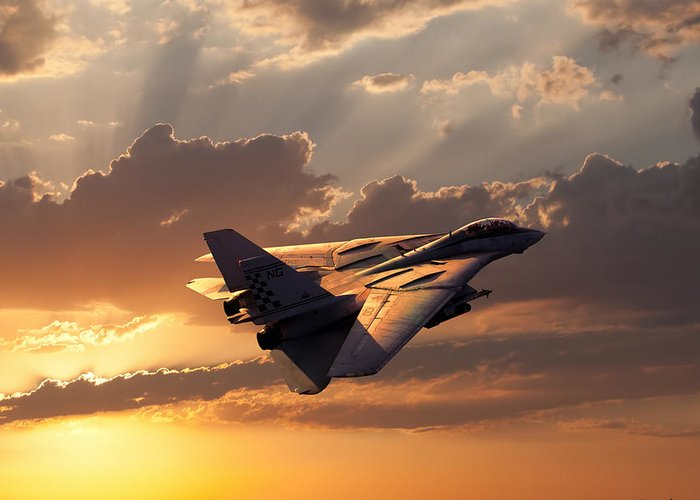 Aviation Greeting Card featuring the digital art Timeless Beauty Tomcat by Peter Chilelli