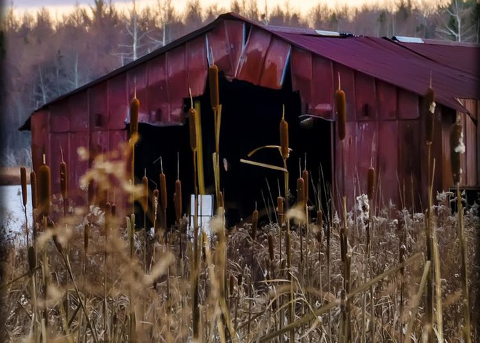 Tin Greeting Card featuring the photograph Tin Roof Rusted by Bill Cannon