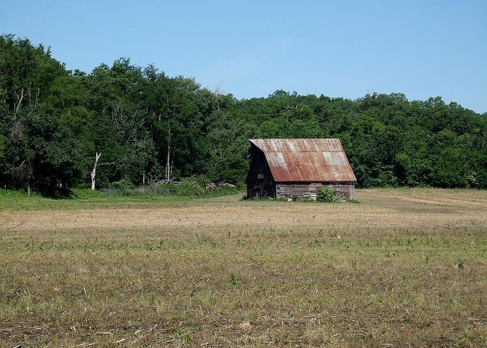 Barn Greeting Card featuring the photograph Tin Roofed Barn by David Addams