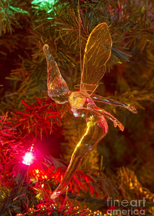 Tink Greeting Card featuring the photograph Tinker Bell Christmas Tree Landing by James BO Insogna