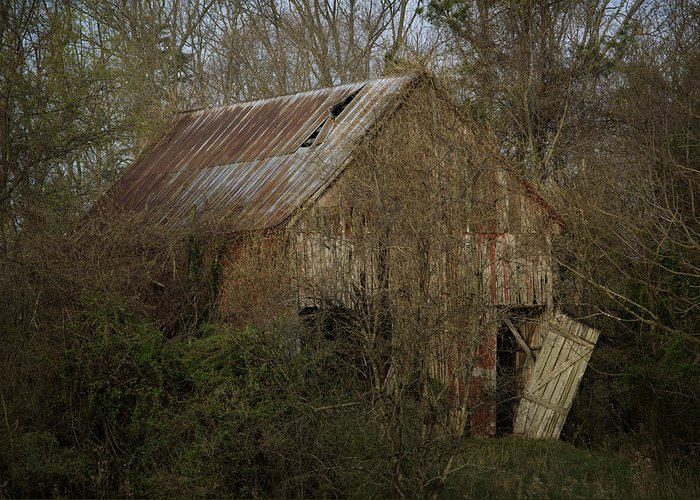 Red Barn Greeting Card featuring the photograph To Be Versed In Country Things by Rebecca Sherman