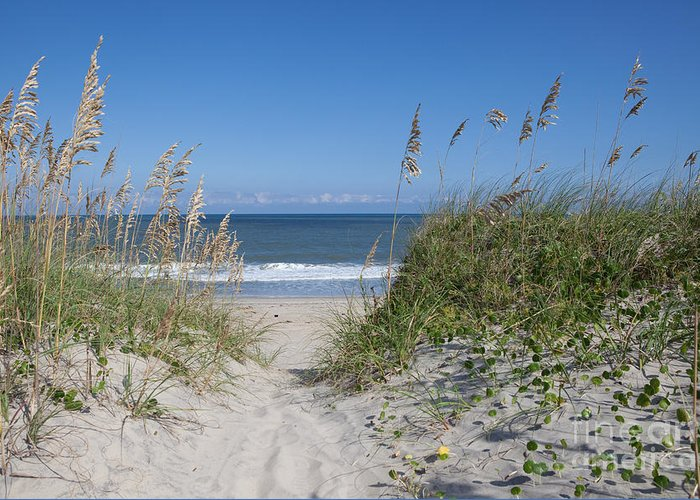 Obx Greeting Card featuring the photograph To The Beach by Kay Pickens