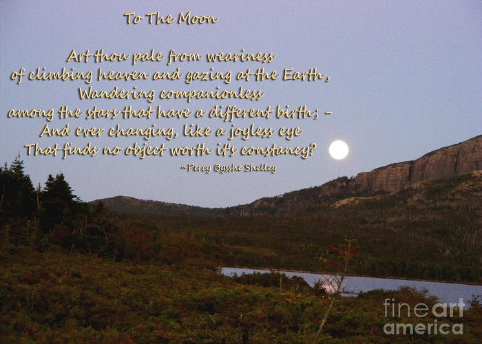 To The Moon Greeting Card featuring the photograph To The Full Moon by Barbara Griffin