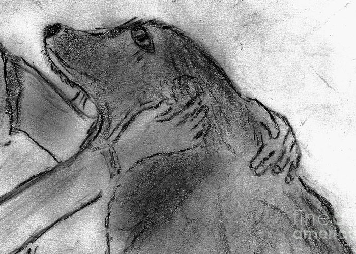 Dog Greeting Card featuring the drawing Togetherness by Elizabeth Briggs