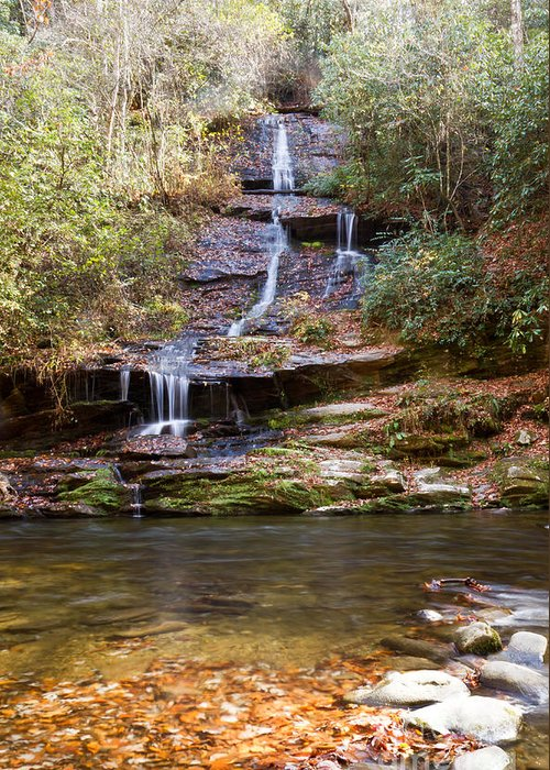 Tom Branch Greeting Card featuring the photograph Tom Branch Falls by Terry Cotton