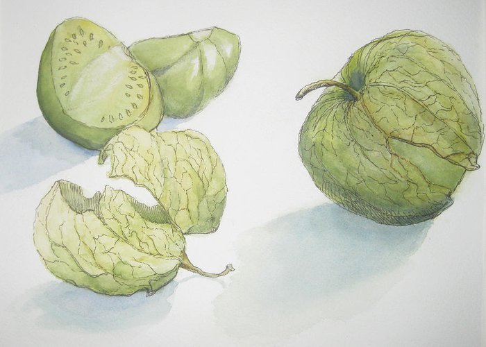 Pen And Ink Drawing Greeting Card featuring the painting Tomatillos by Maria Hunt